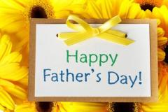To Our DV Dads