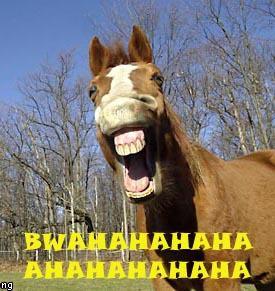 021_horse_bwahahaha.jpg
