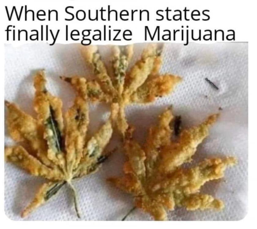 2094889343_southernmarijuana.thumb.jpg.31ff36afb86107eceecf00f6a073945d.jpg